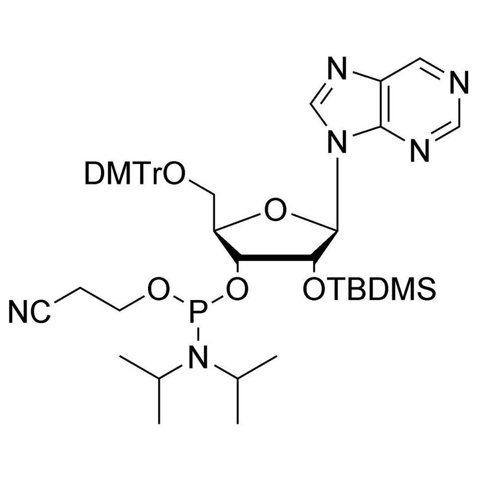 Nebularine CE-Phosphoramidite