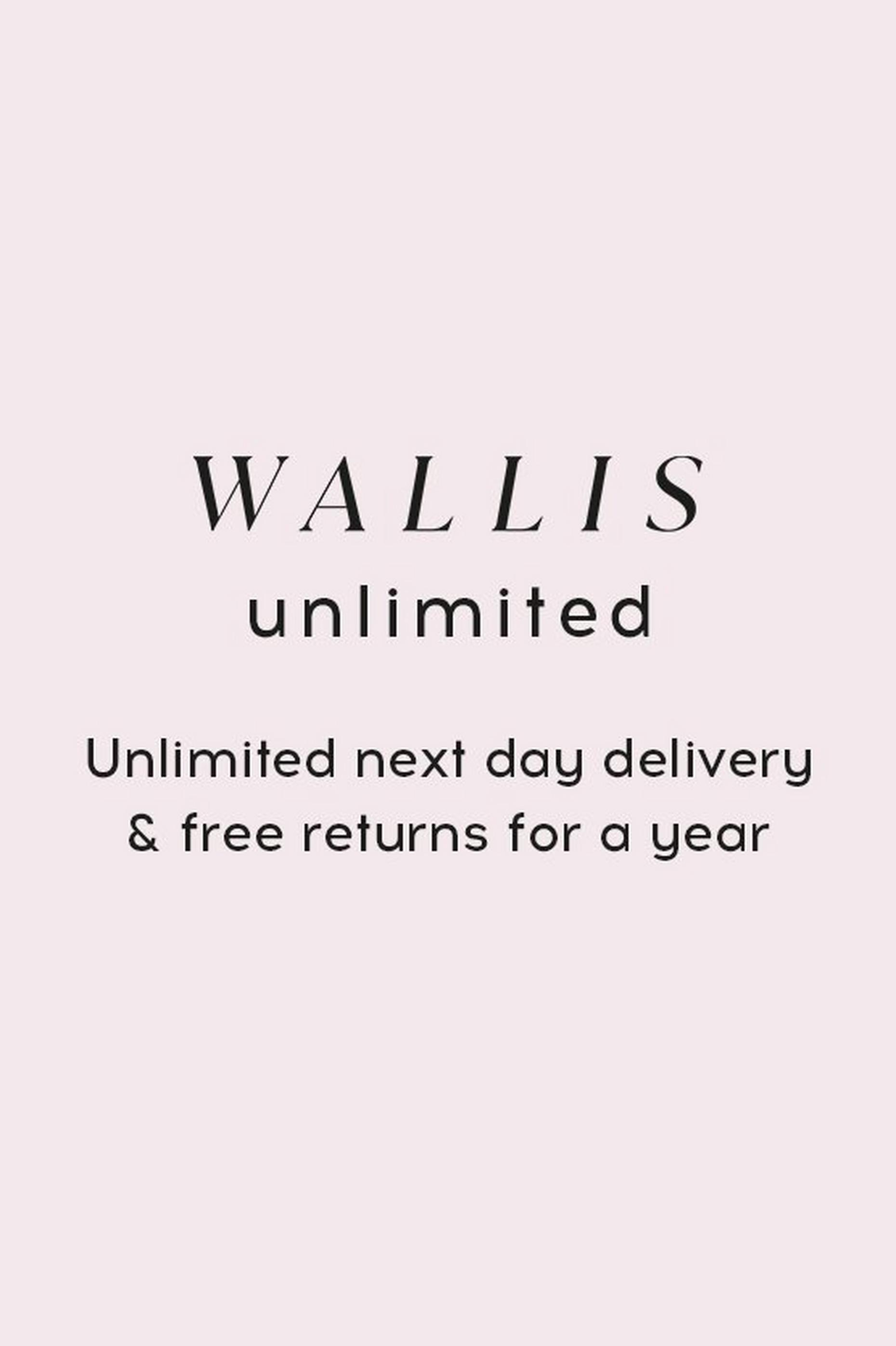 UNLIMITED NEXT DAY DELIVERY