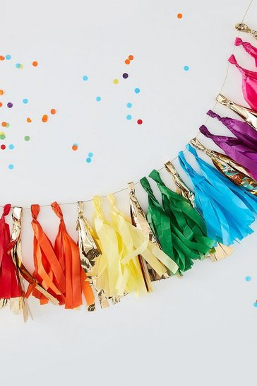 Multi Ginger Ray-Tassel Garland