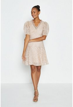 Blush Broidery Organza Puff Sleeve Short Dress