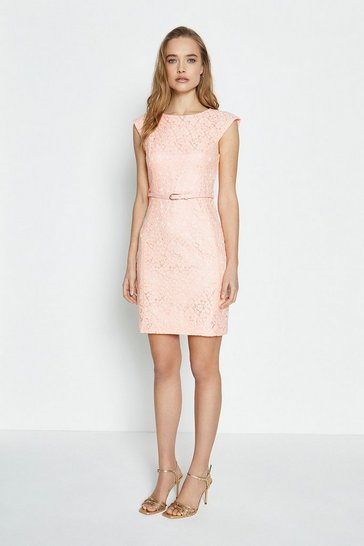 Blush Lace Belted Cap Sleeve Dress