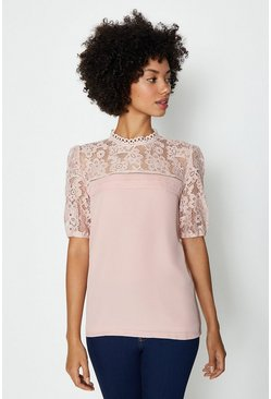 Blush Sleeved Lace Shell Top