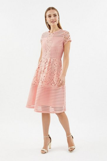Blush Stripe Bodice Lace Panelled Dress