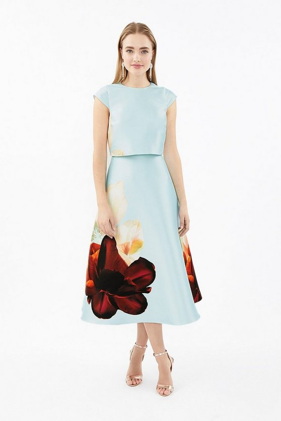 Blue Floral Cap Sleeve Full Skirted Shelf Dress