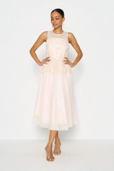 Blush Lace Bodice Tulle Skirt Dress