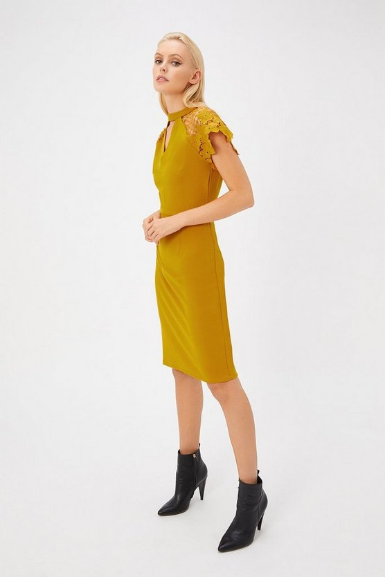 Womens Mustard Lace Cap Sleeve Shift Dress