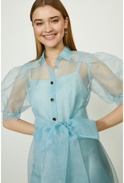 Pale blue Organza Puff Sleeve Dress
