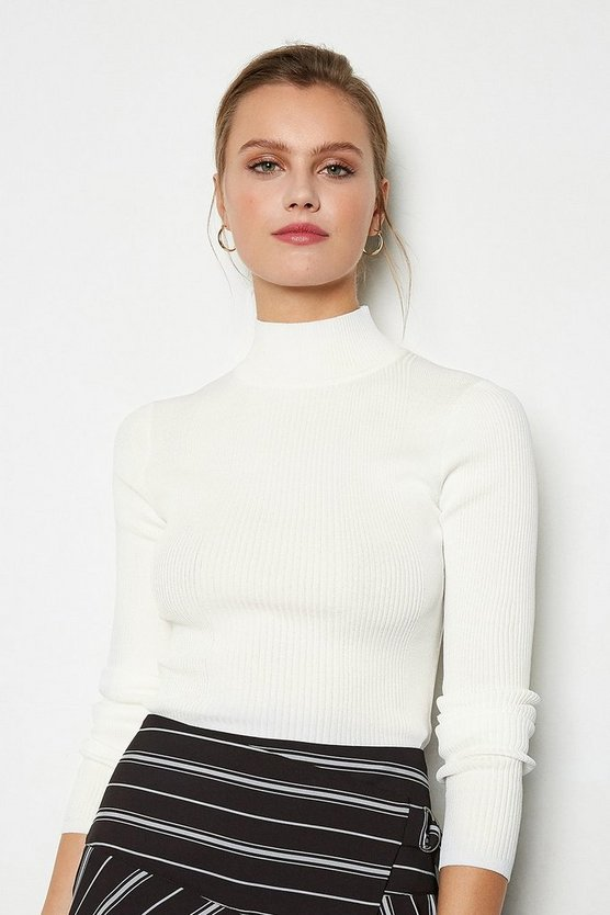 Ivory Essential Skinny Rib Turtleneck Jumper