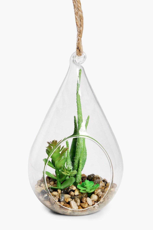 Large Cactus Hanging Glass Terrarium Boohoo