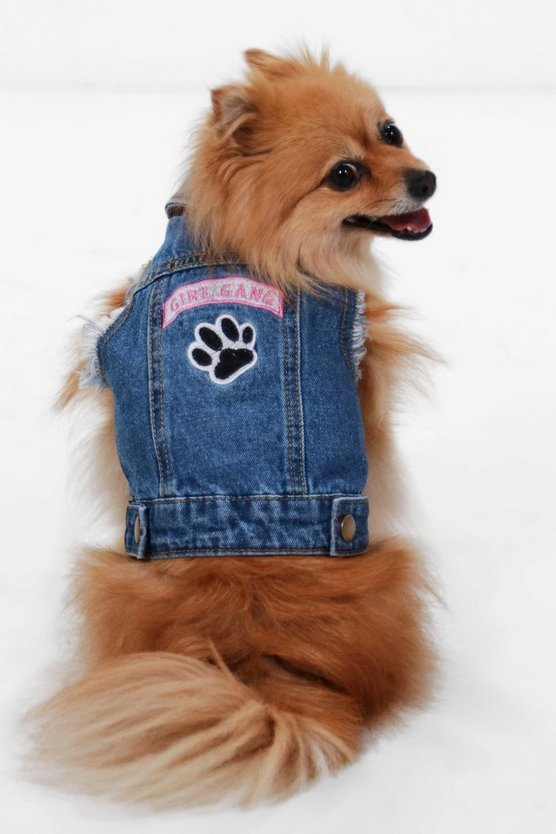 charlie giubbotto di jeans girl gang dog