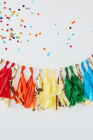 Multi Ginger Ray Rainbow Tassel Garland