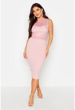 Womens Blush Lace Panelled Detail Midi Dress