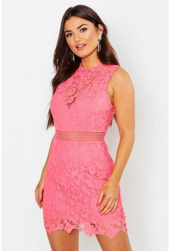 Womens Coral Lace Scallop High Neck Bodycon Dress