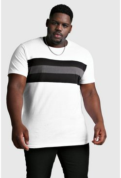 White Big And Tall Longline Colour Block T-Shirt