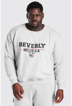 Grey marl Big and Tall Beverly Hills Print Sweater