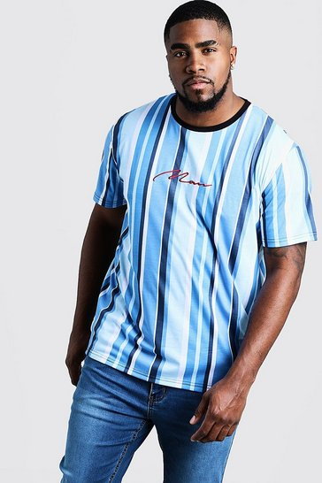 Mens Mint Big & Tall MAN Embroidered Stripe T-Shirt