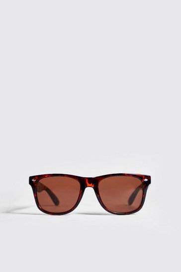 Brown Classic Sunglasses With Tortoise Frame