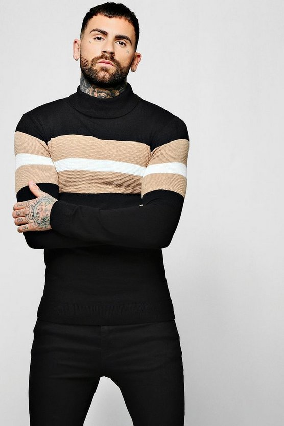 Muscle Fit Colour Block Roll Neck