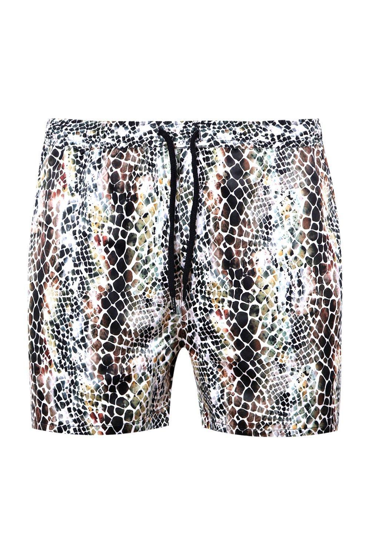 marrón serpiente de satén en cortos estampado shorts Conjunto de con qwApzz
