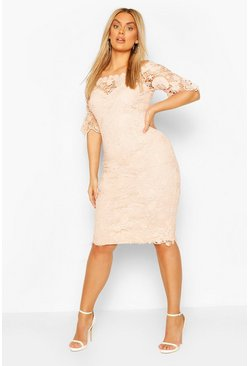 Blush Plus Occasion lace Bardot Midi Dress