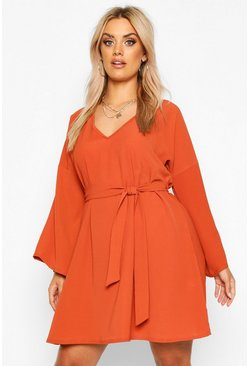 Terracotta Plus Tie Waist V Neck Swing Dress