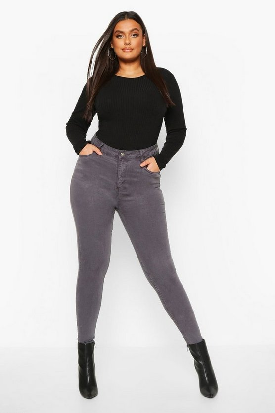 Plus 5 Pocket Stretch High Waist Skinny Jeans