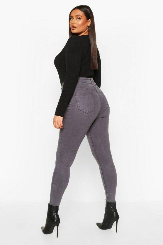 Plus 5 Pocket Stretch High Waist Skinny Jeans