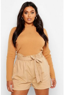 Camel Plus Ribbed Turtle Neck Jumper
