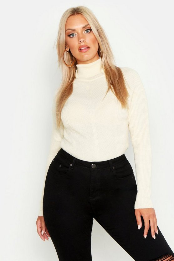 Plus Rib Knit Roll Neck Jumper