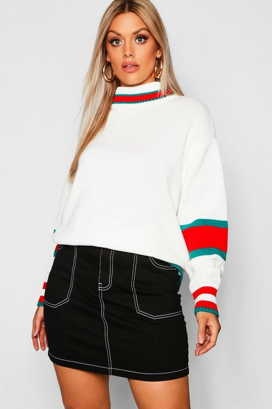 Womens Ivory Plus Roll Neck Stripe Detail Jumper
