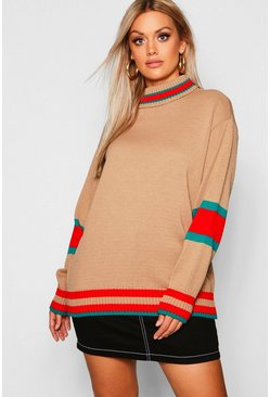 Womens Mocha Plus Roll Neck Stripe Detail Jumper
