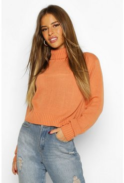Womens Apricot Petite Roll Neck Crop Sweater