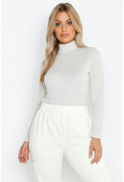 Taupe Plus Rib Turtle Neck Sweater