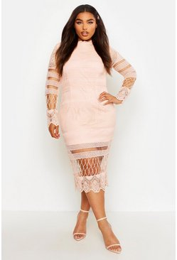 Womens Blush Plus Lace Panelled Midi Dress
