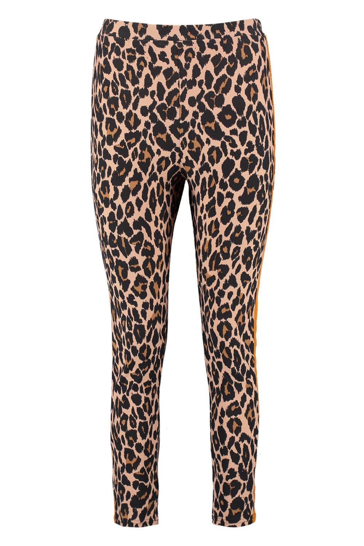 Print Leggings Panel Petite Leopard brown Contrast WHcw5SpcCq