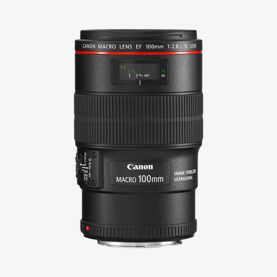 Canon EF 100mm f/2.8L Macro IS USM Lense