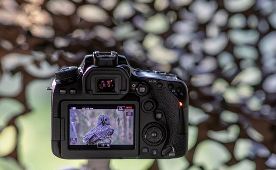 EOS 90D Shooting Video Article