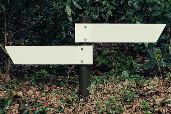 Sign posts in forest
