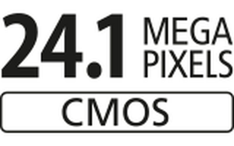 24.1 APS C sensor