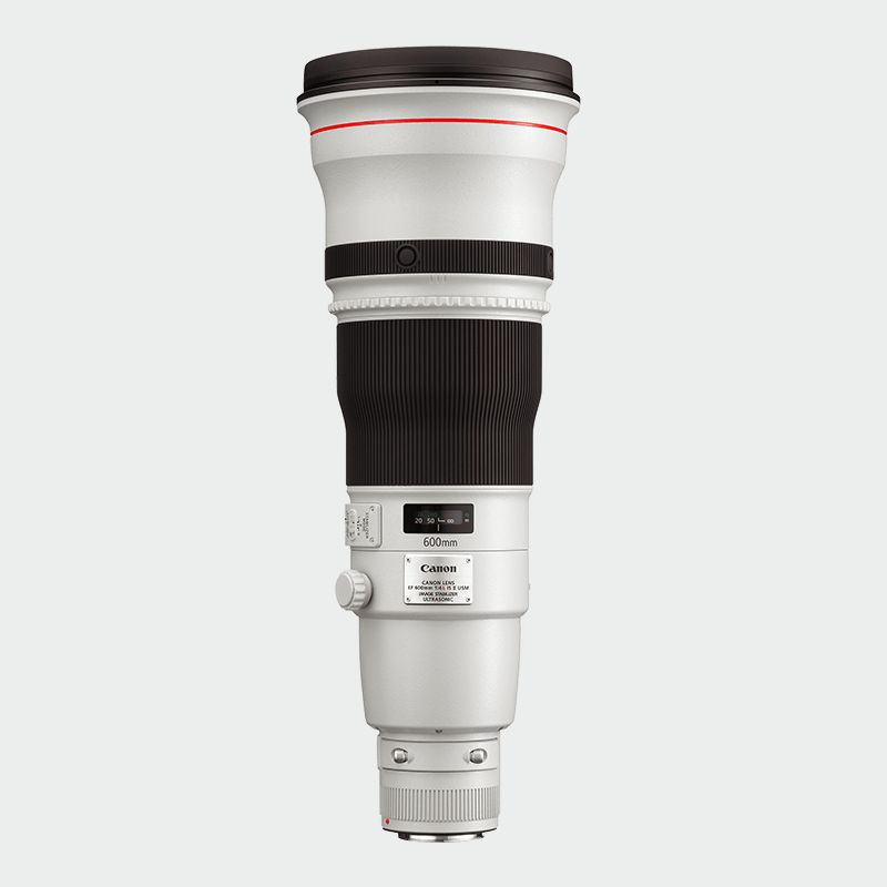 EF 600mm f/4L IS II USM L series Lense