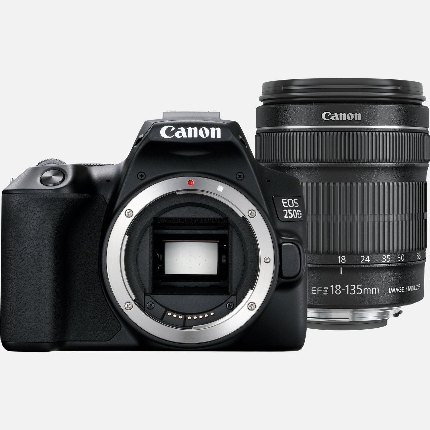 Image of Canon EOS 250D Body, Black and EF-S 18-135mm f/3.5-5.6 IS STM lens