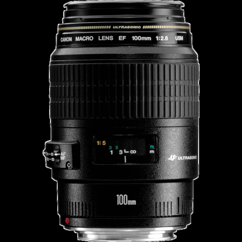 Canon EF 100mm f/2.8 USM Macro Lens | Digital Photography Live