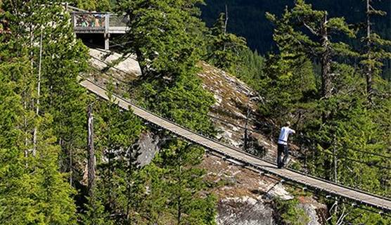 Landscape traveling bridge