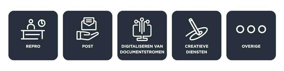 Domeinen - Procesanalyse Document Services