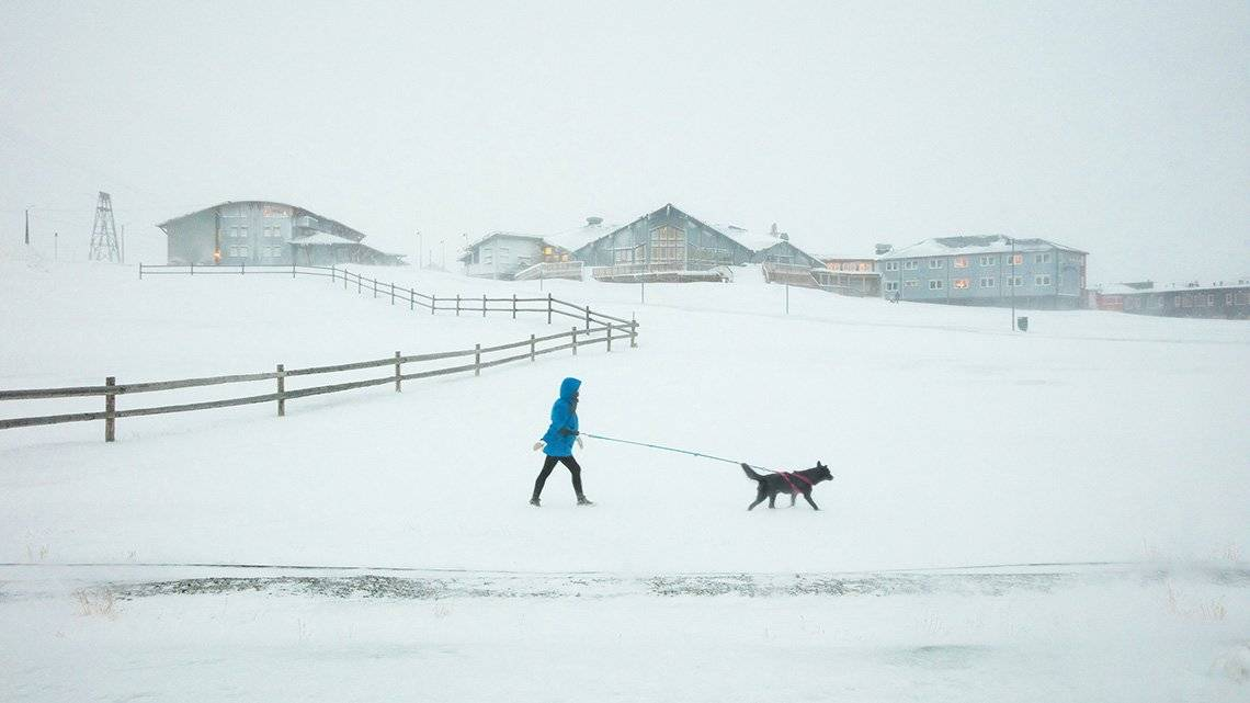 When Canon Ambassador Guia Besana saw this dog 'walking its human' in a snow storm in Longyearbyen, Svalbard, Norway, she sprung into action to capture the scene. Taken on 12 February 2018 on a Canon EOS 5DS R with a Canon EF 24-70mm f/2.8L II USM lens. © Guia Besana