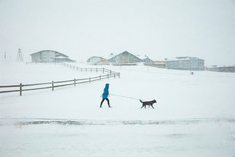 How Guia Besana summed up the Arctic winter in one shot