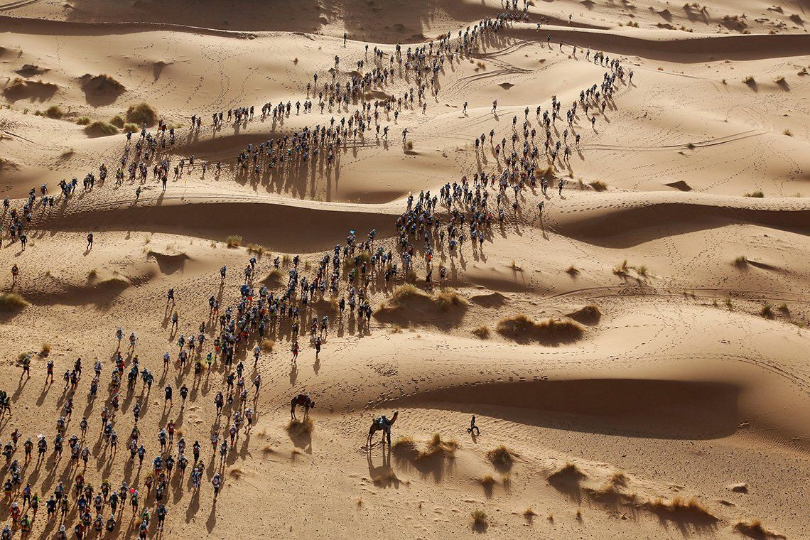 Hundreds of runners cross the Sahara Desert, seen from above.