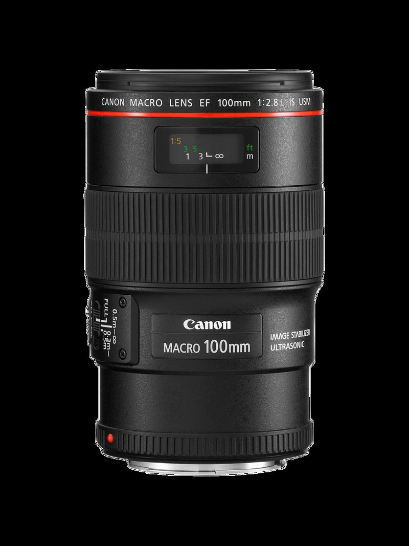 EF 100mm IS USM MACRO FRT WITHOUT CAP MATCH