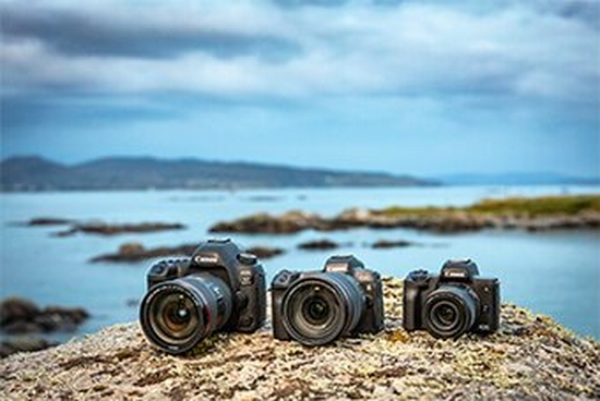 Canon EOS family