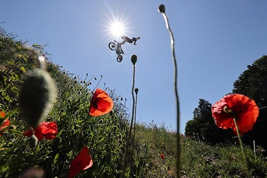 A mountain biker performs a mid-air stunt against the sun. The image is shot from below and framed by red poppies and grasses on the hillside.